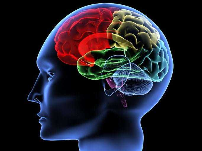Vücudun Beyin Felci Öncesinde Verdiği 8 Uyarı 4