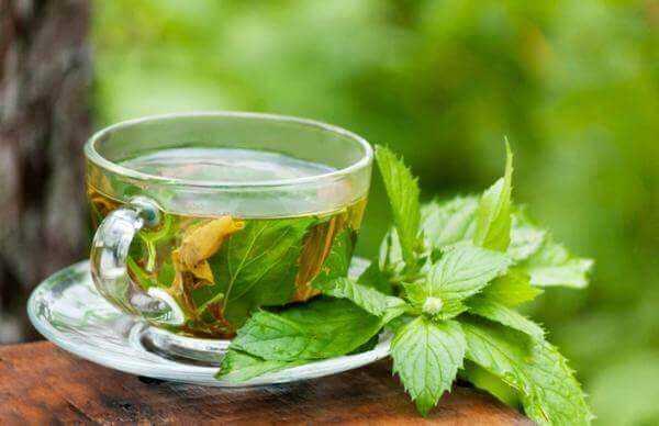 Karaciğer Yağlanmasına Karşı Faydalı Olacak 5 Doğal Çay 1