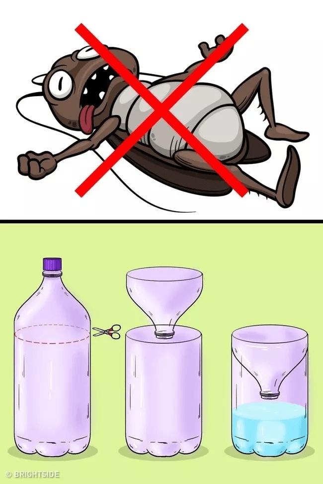 Photo of Hamam Böceklerinden Nasıl Kurtuldum
