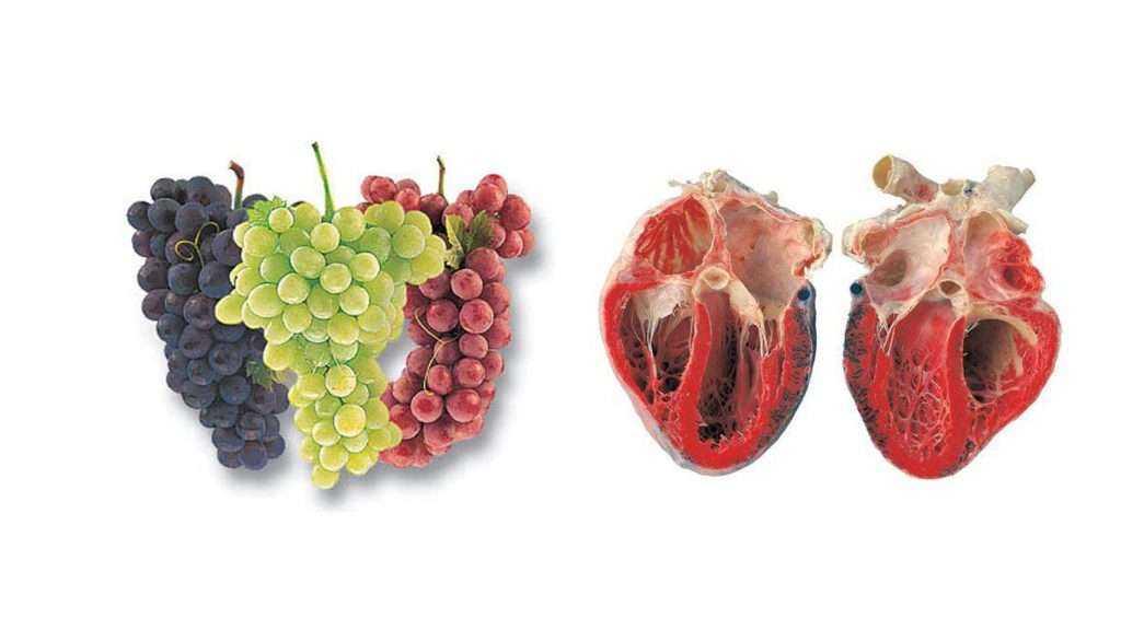 Benzediği organlara iyi gelen besinler! 9