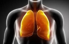Akciğerde-ki Nikotin ve Katranı Temizleyen Harika Kür 3