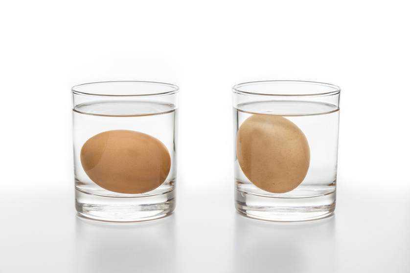 Yumurta Suyun Dibine Batıyorsa 1