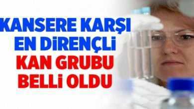 Photo of K-ANSERE KARŞI EN DİRENÇLİ K-AN GRUBU BELLİ OLDU